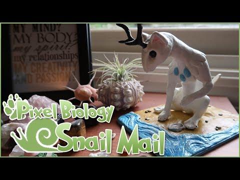 Super Special Snail Mail Surprises & Announcements!! 🐌 • Pixel Biology Updates