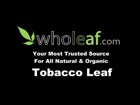 Tobacco Leaf | All Natural & Organic Tobacco Leaf | Wholeaf.com