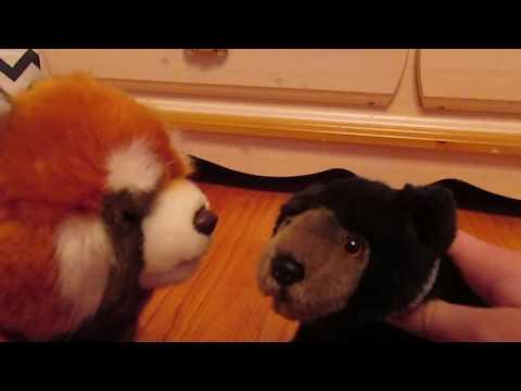 Webkinz: cinnamon's prank series ep. 1 season 1
