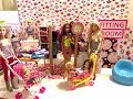 Barbie Shopping Routine!! Haley and Ally!