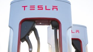 Download Tesla's Run Has Only Just Begun, Says Ark Investment CEO Mp3 and Videos