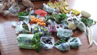 Juicing and raw foods for Autism Recovery