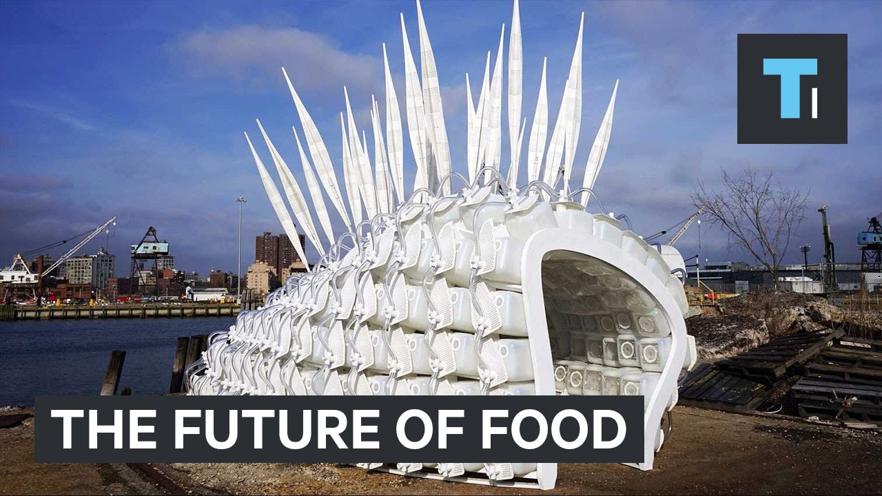 This weird building contains the future of food