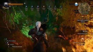 The Witcher 3 новый могильник(секрет)