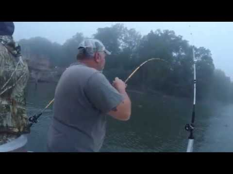 Striper Fishing Smith Mountain Lake - Episode 2 (VERY FOGGY)