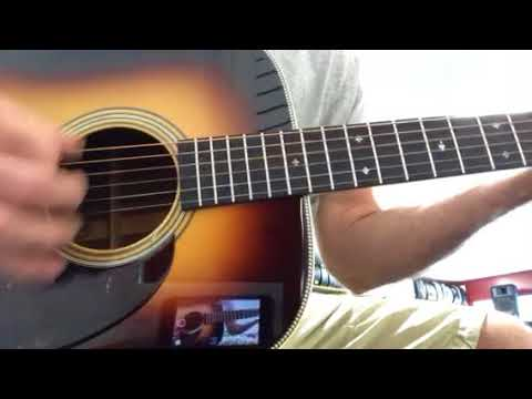 Brothers Music Shop 1967 Martin D-28 Conversion • Sound