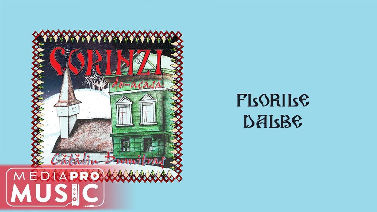 Catalin Dumitras - Florile dalbe (Official Audio)