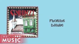 Descarca Catalin Dumitras - Florile dalbe (Colind)