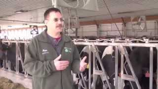 Lely Large dairy farm - USA (English / United States)