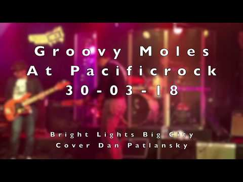 Groovy Moles - Bright Lights Big City
