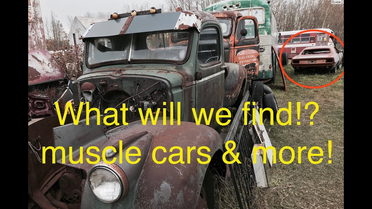 Junkyard diamonds part 3. What will we find?!? Muscle Cars ...