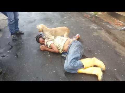 Perrito cuida a su amo mientras duerme borracho en la calle