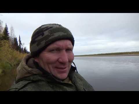 Рыбалка на сети Охота на уток без ружья