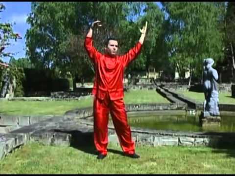 Tai Chi Chi Gong (25 min) NO es espejo
