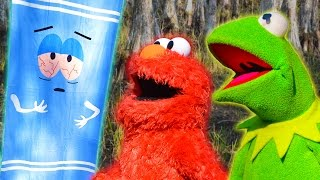 Kermit The Frog, Elmo, and Towelie look for a Fort in the Swamp!