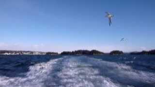 日本三景「松島」の島々の美景をキング・クリムゾン 「アイランズ」で♪ ...