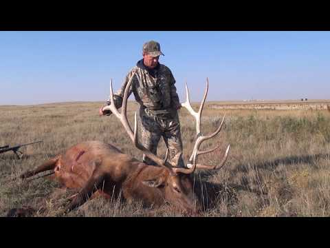 Alberta Elk Hunting Around The Suffield Base
