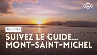 Moi Cécile, nouvelle guide de la baie - Thalassa Mont-Saint-Michel (reportage complet)
