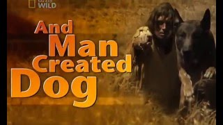 NG: И сотворил человек собаку / And Man Created Dog (2010)