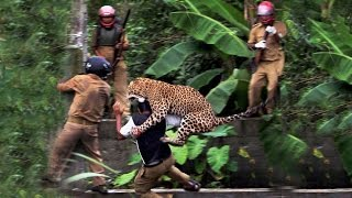 10 Leopard Attacks Caught On Tape