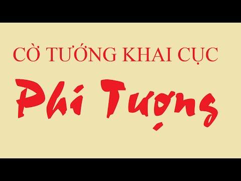 Thế trận Phi Tượng đối Hữu Quá Cung Pháo-12飛象局