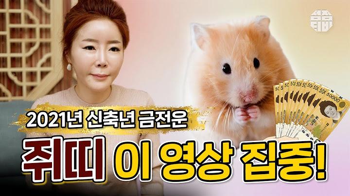 (용한점집)(띠별운세) 서울점집 삼청궁_2021년 신축년 쥐띠 운세!! [점점tv정주행하기]