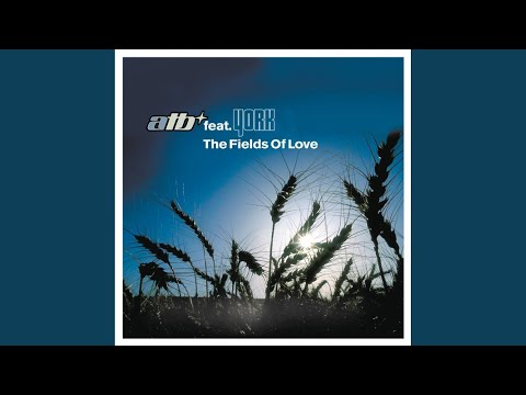 The Fields Of Love (Airplay Mix)