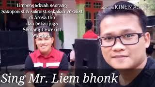 HOLAN HO || Cover ( Agus Limbong Arosa Trio )
