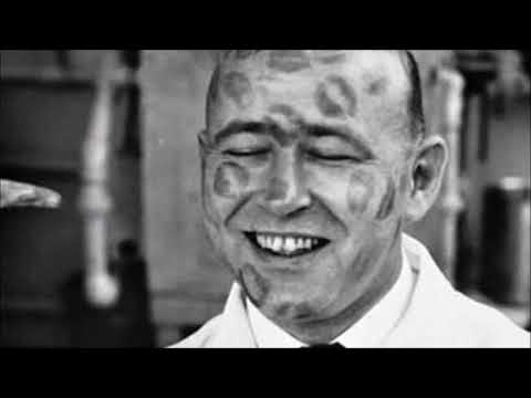 Cosmo Sheldrake — Tardigrade Song [Lyrics]