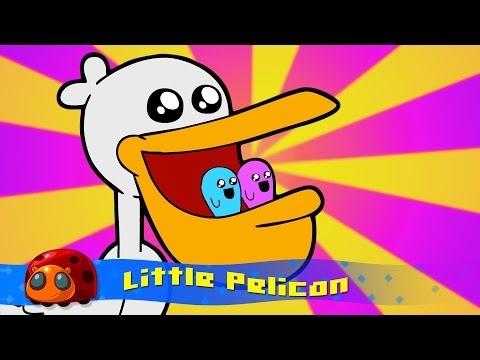 Little Pelican : Silly Song : JellyBug