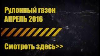 рулонный газон купить(, 2016-05-03T19:02:12.000Z)