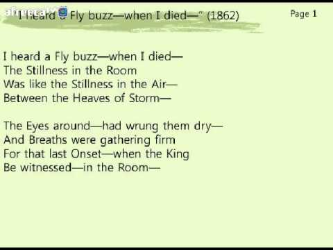 an analysis of i heard a fly buzz when i died by emily dickinson Here is a breakdown analysis of one of emily dickinson's dark poem, 'i heard a fly buzz - when i died', with a background to dickinson too.