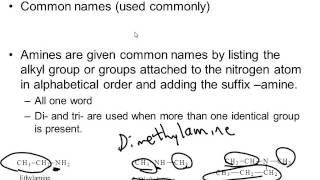 Naming Amines - IUPAC Nomenclature & Common Names