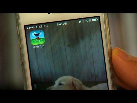 Tech Minute - Bird-watching Apps