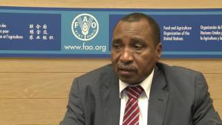 Remarks by Sudan's Minister of Agriculture and Forestry