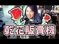 害羞男必備約會恩物! 神秘的乾花自動販賣機【韓國必買】| Mira