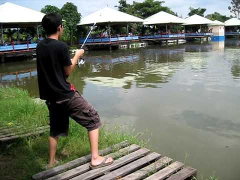 B câu cá !!! mekong catfish...line broken