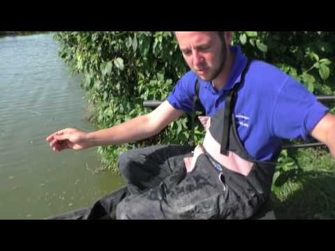 Masterclass with Ryan Whilton how to fish a live match