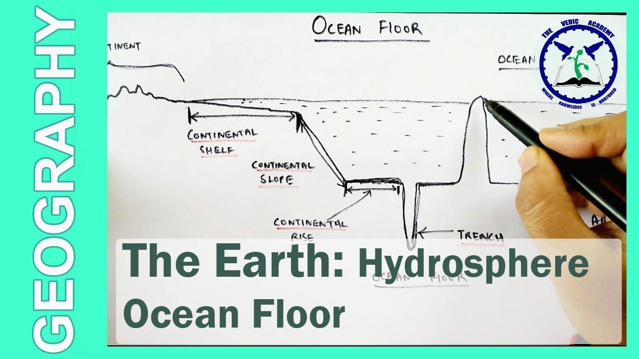 Ocean Floor Profie | SSC Geography