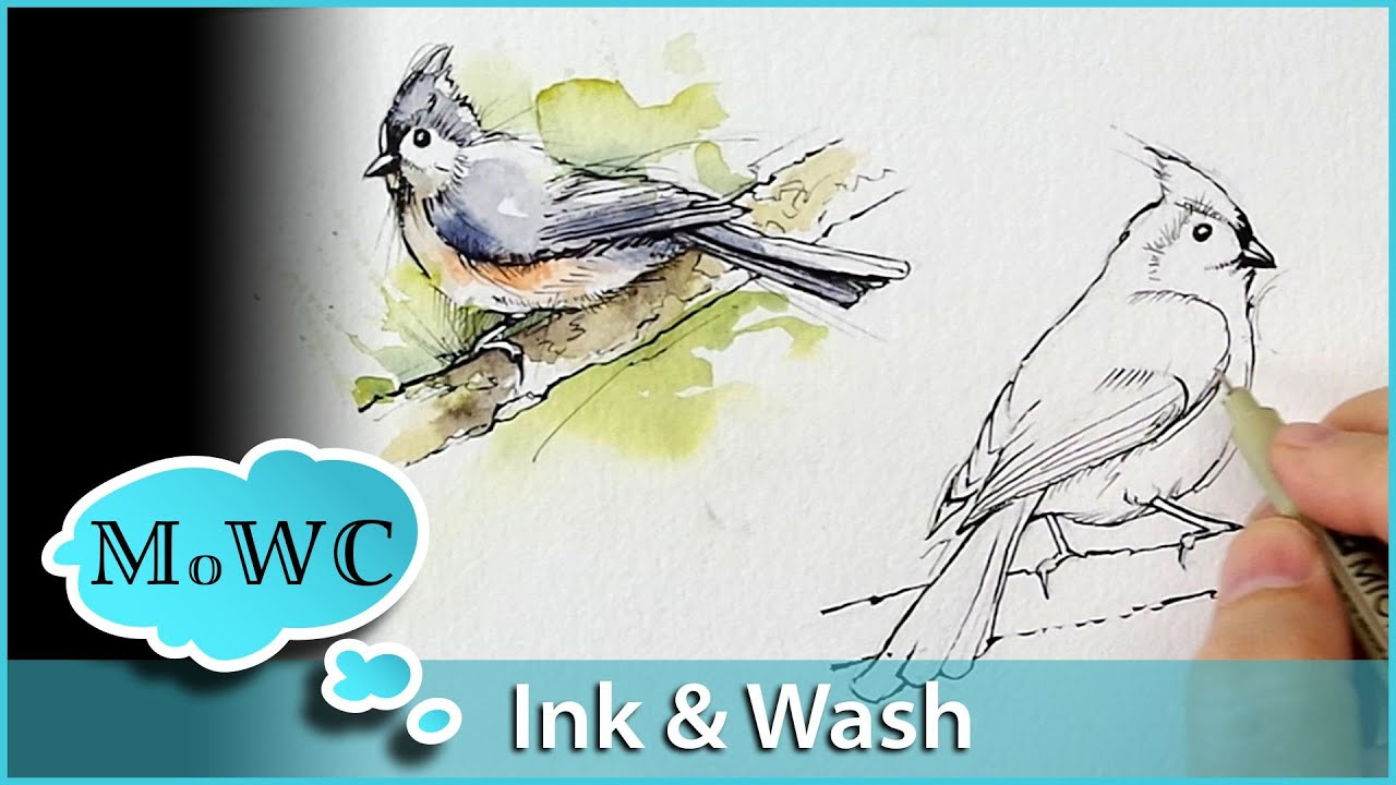 Line Drawing With Watercolor : Painting birds with line and wash watercolor technique