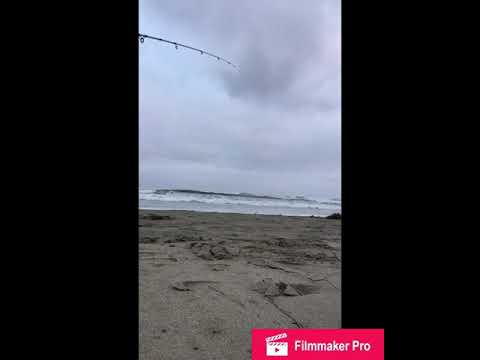 Surf Fishing San Diego Mission Beach