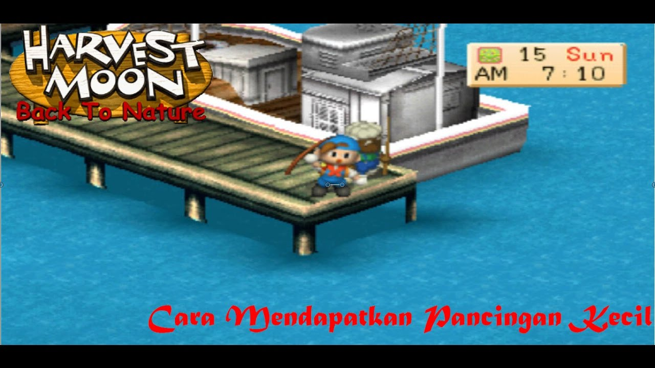 harvest moon awl how to get fishing rod