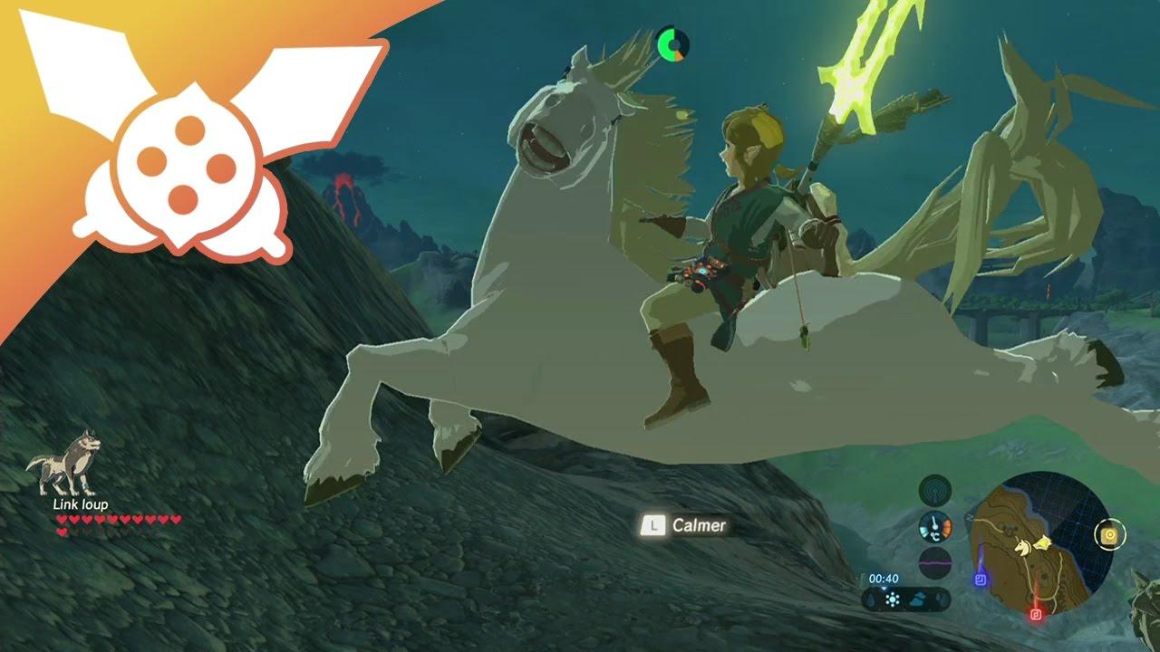Lp The Legend Of Zelda Breath Of The Wild 14 Le Palefroi Chocolat Blanc