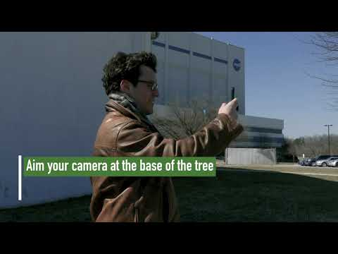 You Can Help NASA's Laser-Scanning Satellite By Measuring Trees With Your Phone