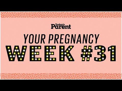 Your pregnancy: 31 weeks