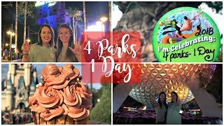 Disney World Vlog February 2018 | Four Parks One Day Challenge