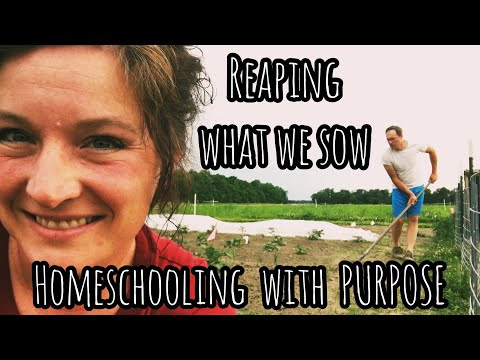 Reaping what we Sow - Homeschooling with PURPOSE | Front Porch Catholic