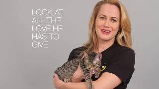 CATS on Broadway's Mamie Parris on Pet Adoption | Cats the Musical