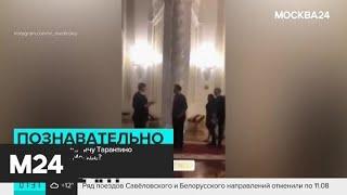 Квентин Тарантино прогулялся по Красной площади и побывал на экскурсии в Кремле - Москва 24