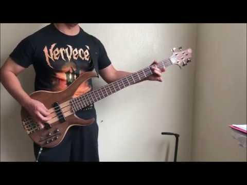 DYING FETUS - Reduced To Slavery Bass Cover